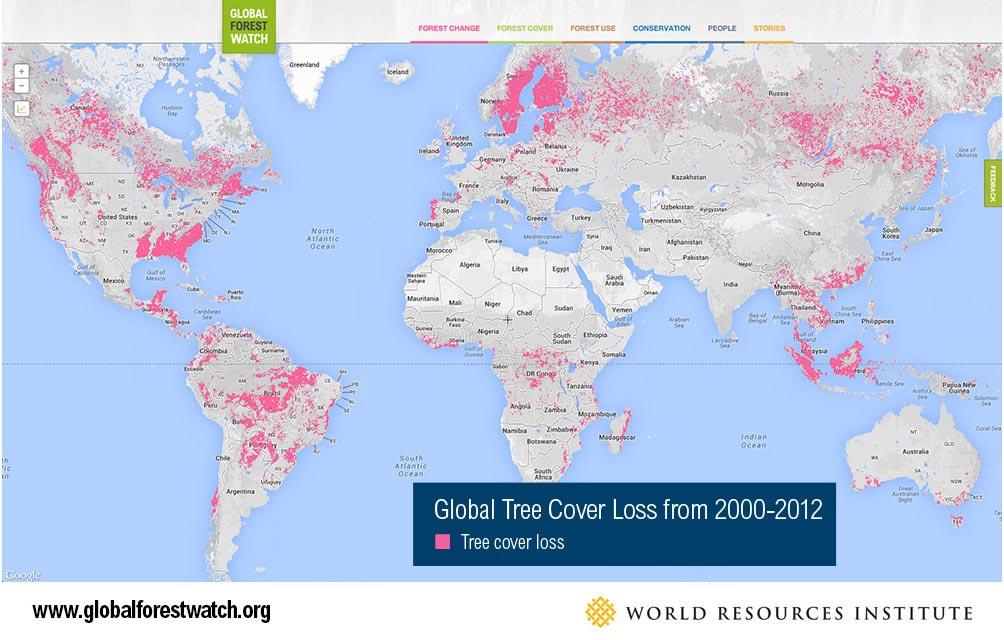 Wereldwijd verlies van bomen volgens het World Resources Institute