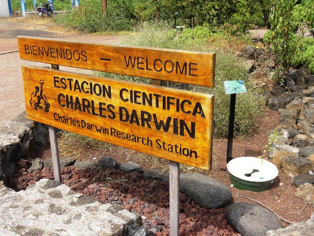 Herstel van het ecosysteem met de Charles Darwin Foundation